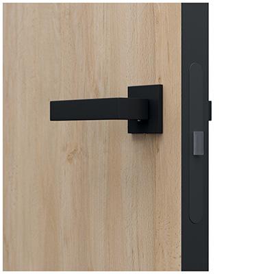 Dveře bez zárubně (do stávajících nebo nových kovových zárubní)